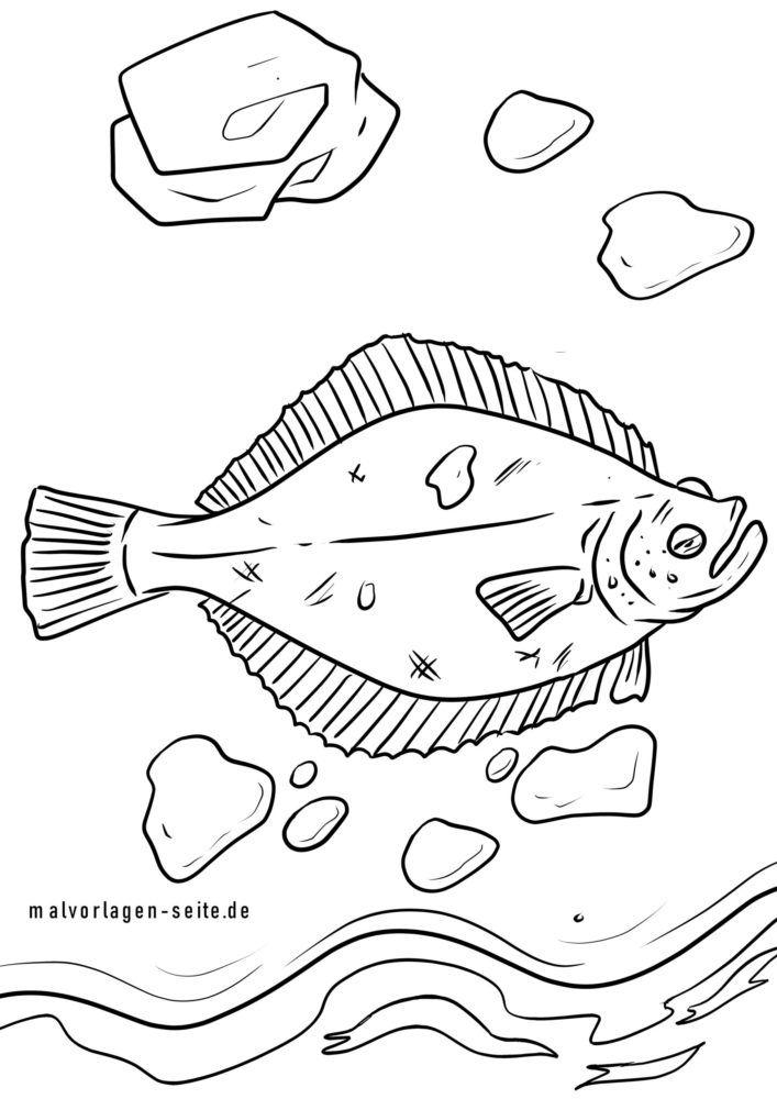 საღებარი გვერდი plaice / flounder