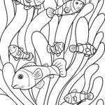 Malvorlage Seeanemonen und Fische