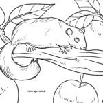 Coloring page dormouse
