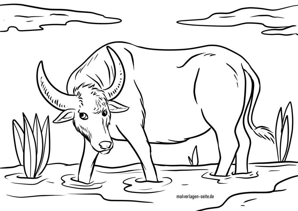 Bojanje stranice vodeni bivol