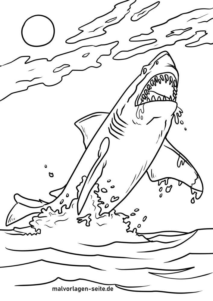 Bojanje stranice veliki bijeli morski pas