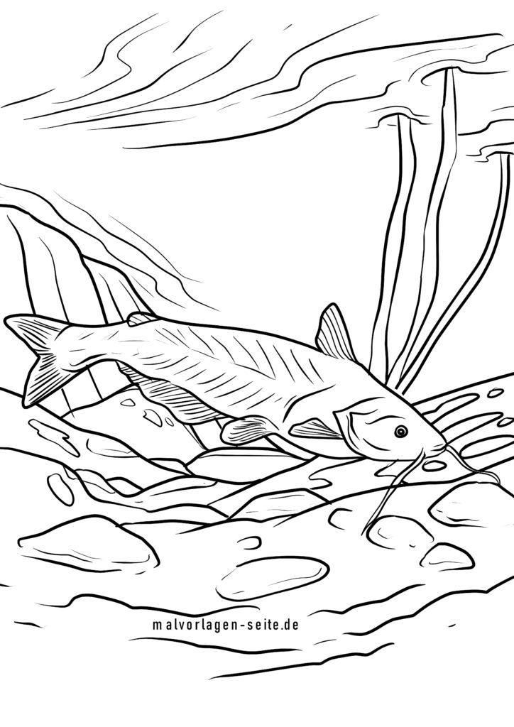 ausmalbilder fische  kostenlose malvorlagen gratis