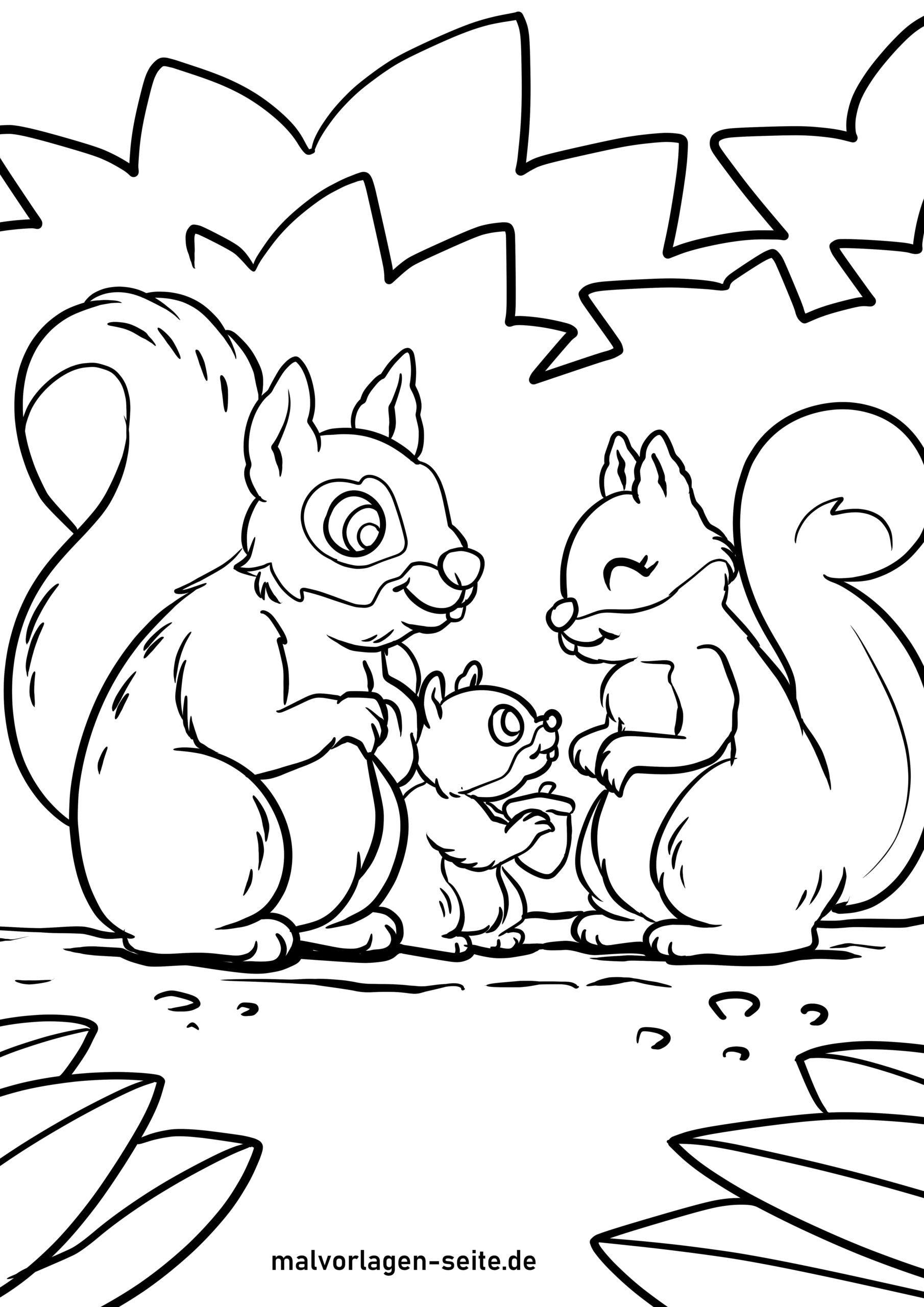 Malvorlage Eichhörnchen   Kostenlose Ausmalbilder