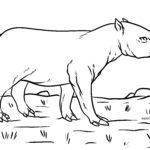 Zbarvení stránky tapír