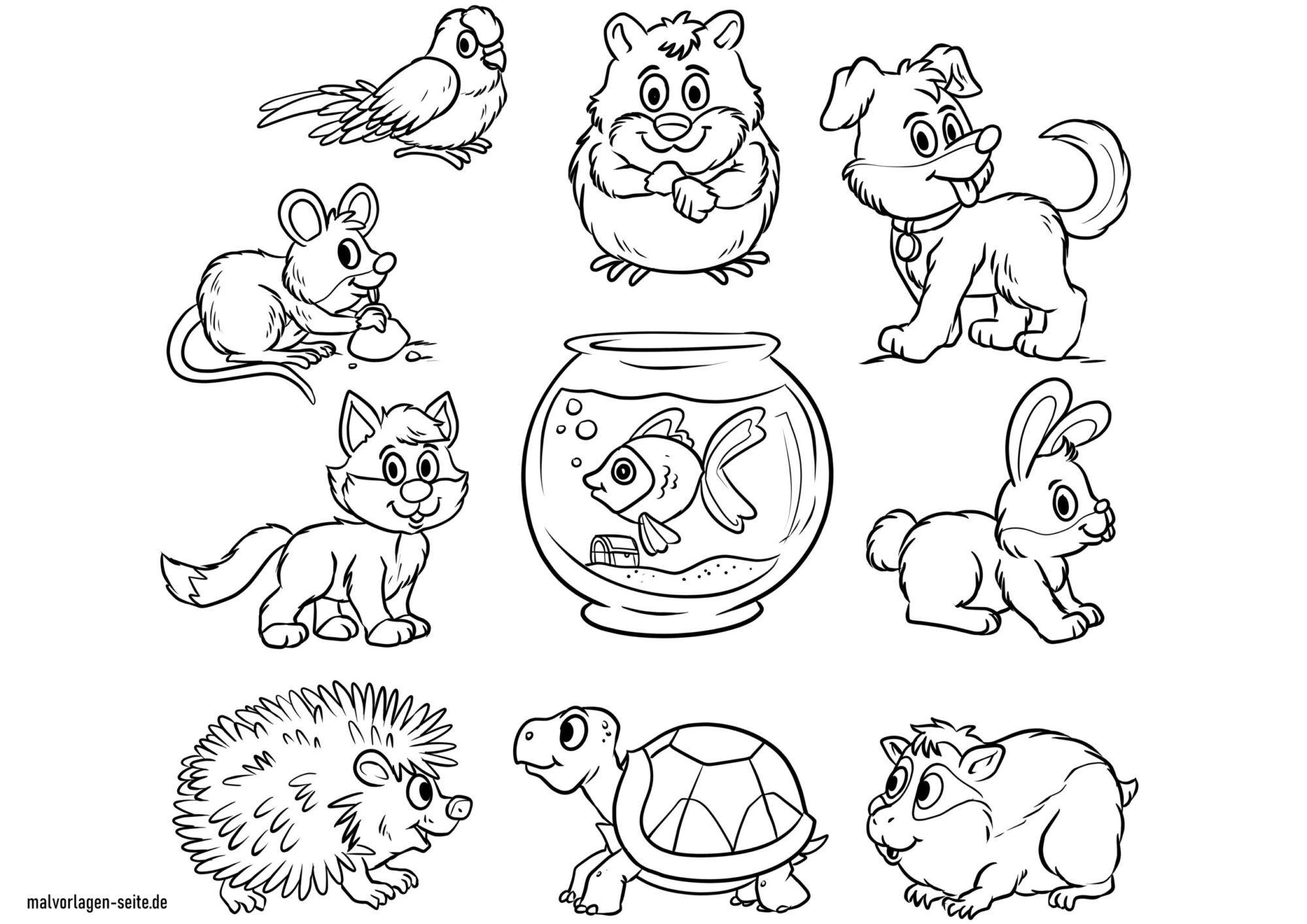 Värityskuva eläimet