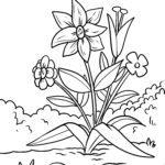 Daidaita shafi violets