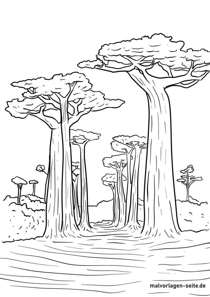 Zbarvení stránky baobabů
