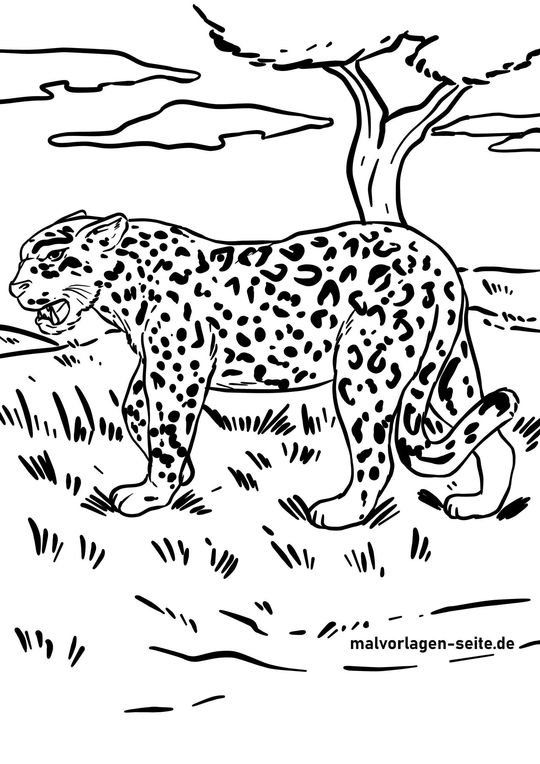 Tolle Malvorlage Jaguar - Wilde Tiere - Kostenlose Ausmalbilder