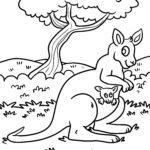Размалёўка кенгуру