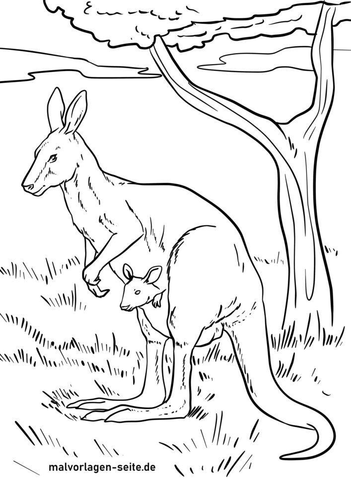 ຫນ້າສີ kangaroo ຍັກໃຫຍ່