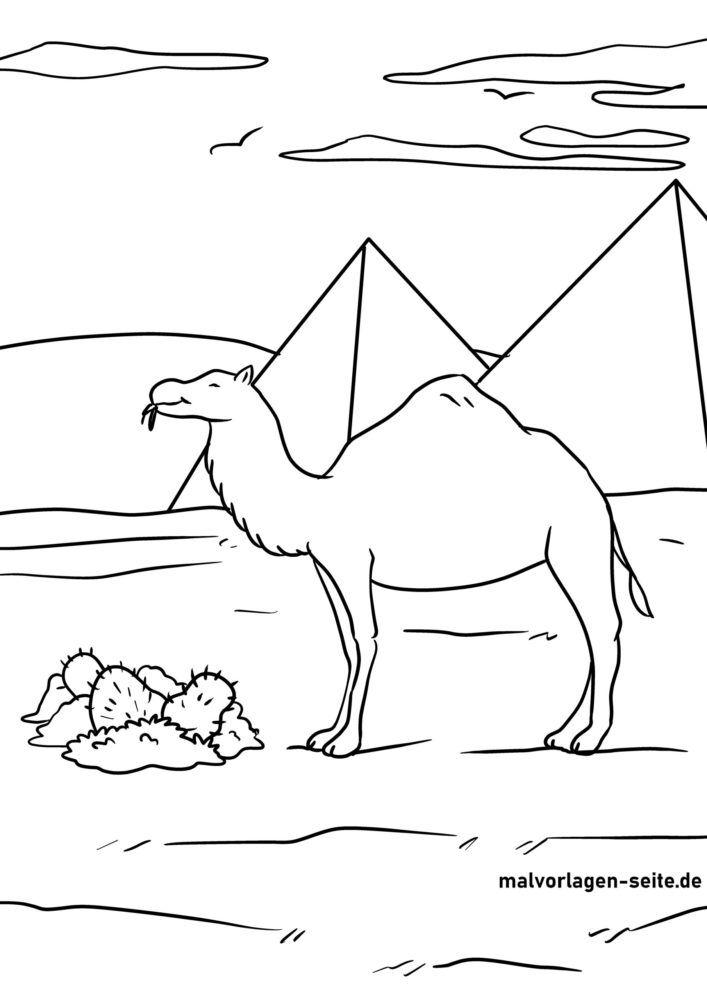 Pagina di culore cammellu