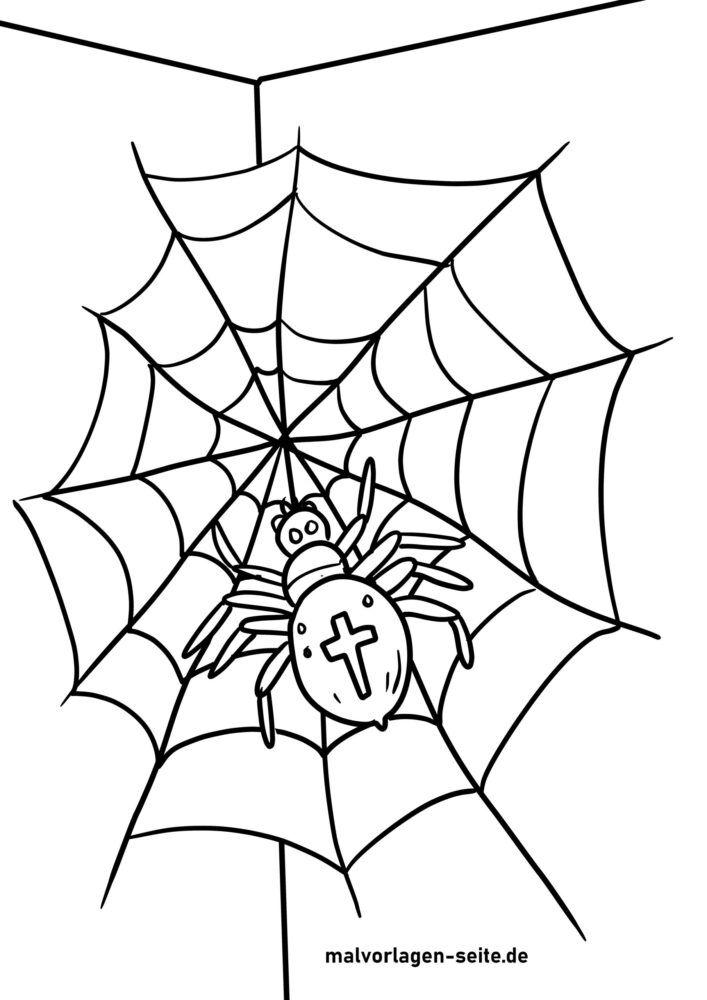 Χρωματισμός σελίδα αράχνη κήπου