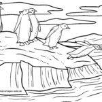 Penguins faciens fuco colorem pagina in in glaciei Floe