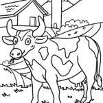 Pagine di culore di vacca - fattoria