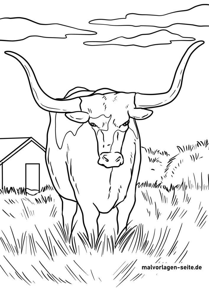 Litarefni Texas Longhorn nautgripir