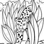 পৃষ্ঠা চিতাবাঘ - বন্য প্রাণী