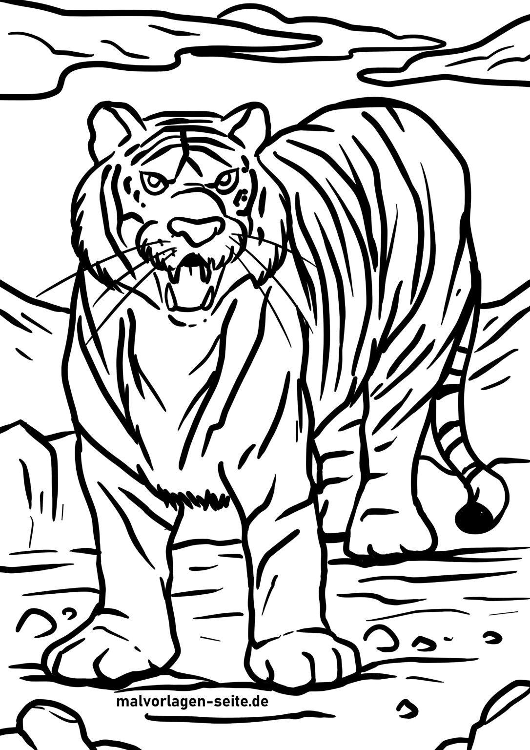 malvorlage tiger  kostenlose ausmalbilder