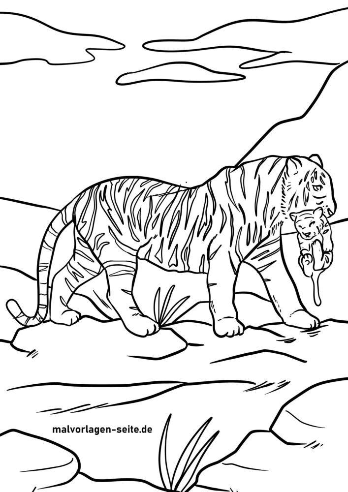 Цветна страница Тигър