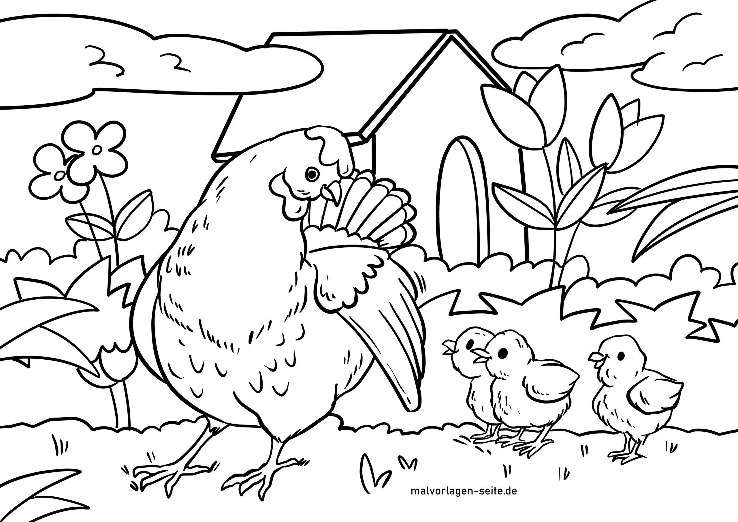 Tolle Malvorlage Henne Mit Küken - Hühner - Kostenlose Ausmalbilder
