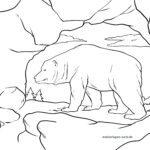 Размалёўка пячорны мядзведзь - жывёлы каменнага веку