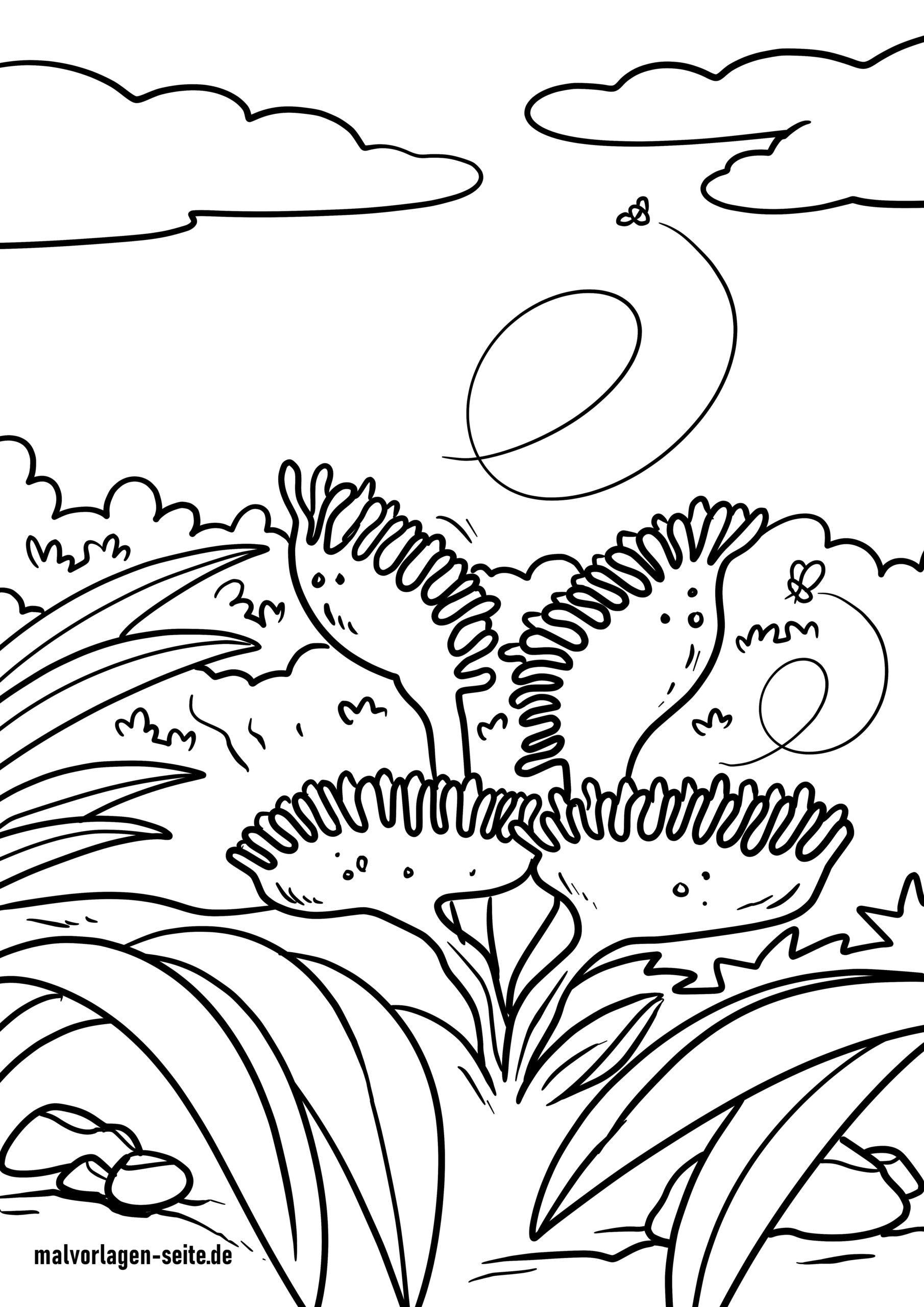 Shafin canza launi Venus flytrap