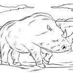 Malvorlage Wollnashorn - Tiere der Steinzeit
