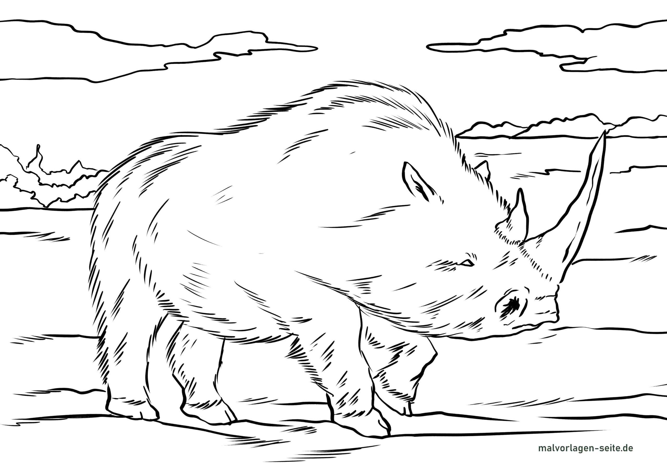საღებარი ბამბა მარტორქა - ქვის ხანის ცხოველები