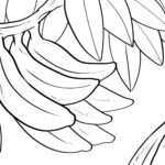 Disegno da colorare banane - frutta