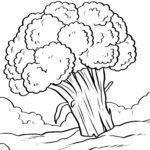 Страница за оцветяване броколи - зеленчуци