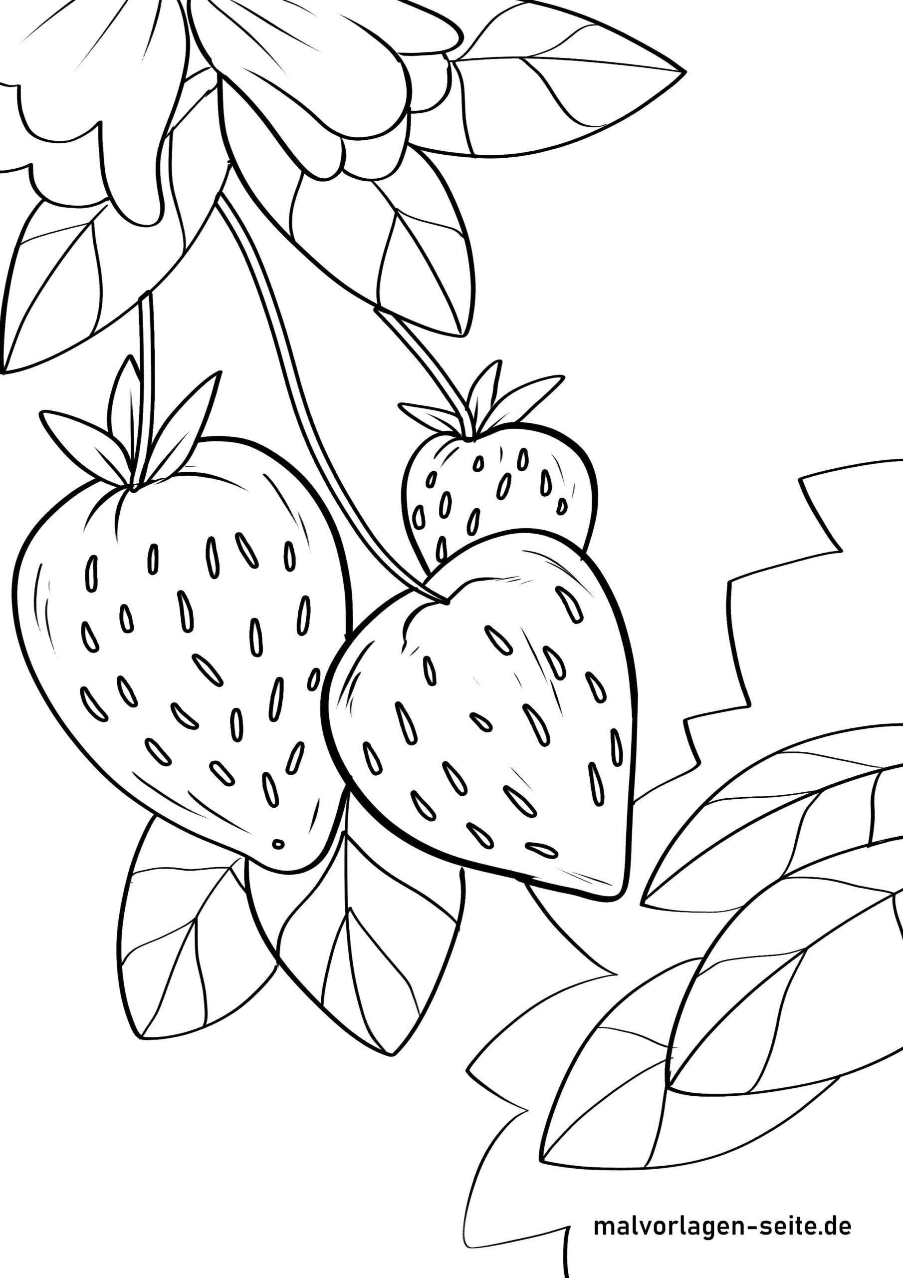 Nā strawberry ʻaoʻao kala