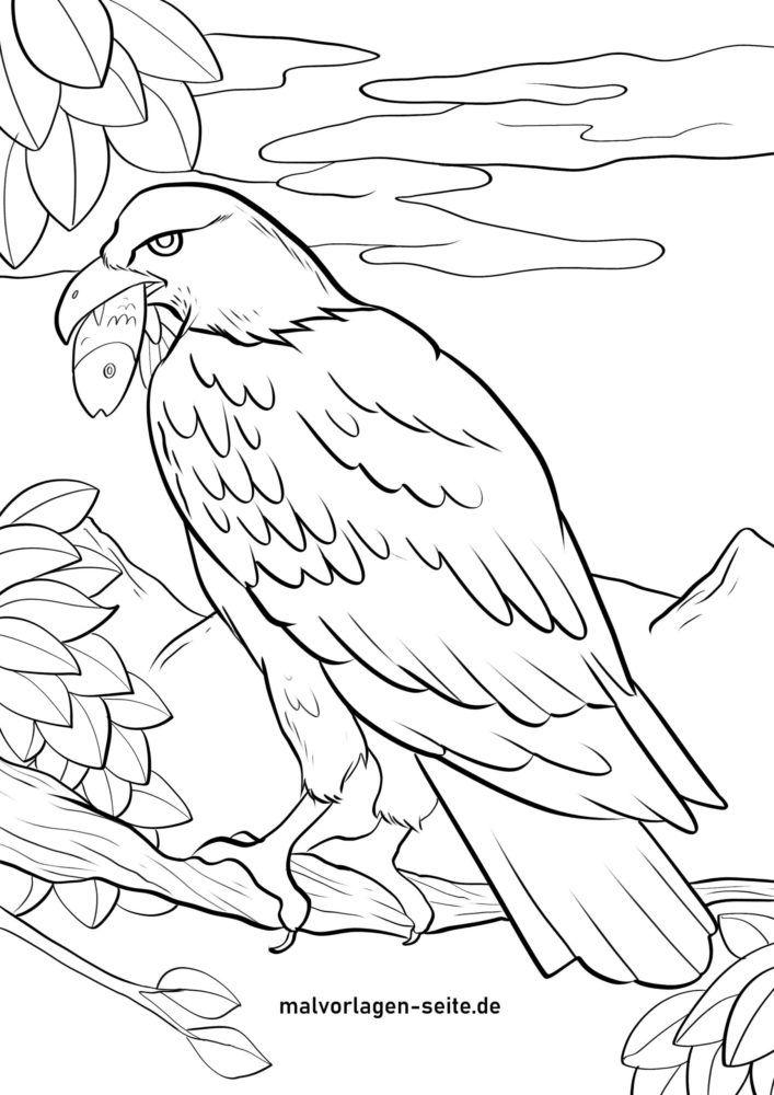 Páx para colorear aguia pescadora