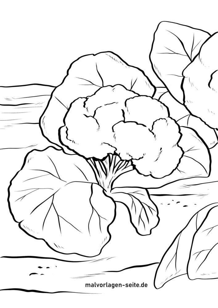 Страница за оцветяване карфиол