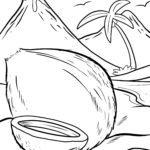 Страница за оцветяване кокос - ядки