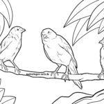 Malvorlage Kanarienvogel
